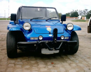 Buggy Bird do Werla