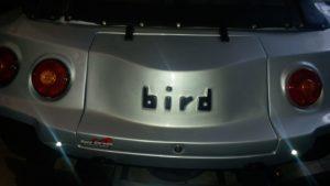 Buggy Bird do Jackson - Planeta Buggy